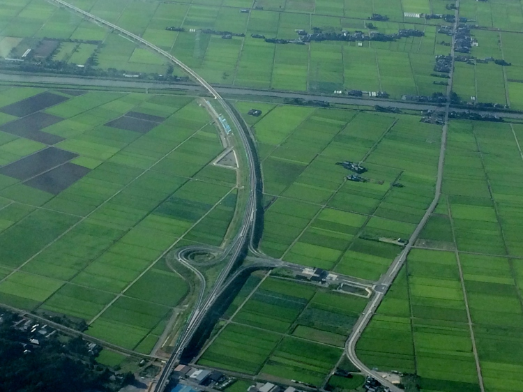 Wide road within Paddy Field