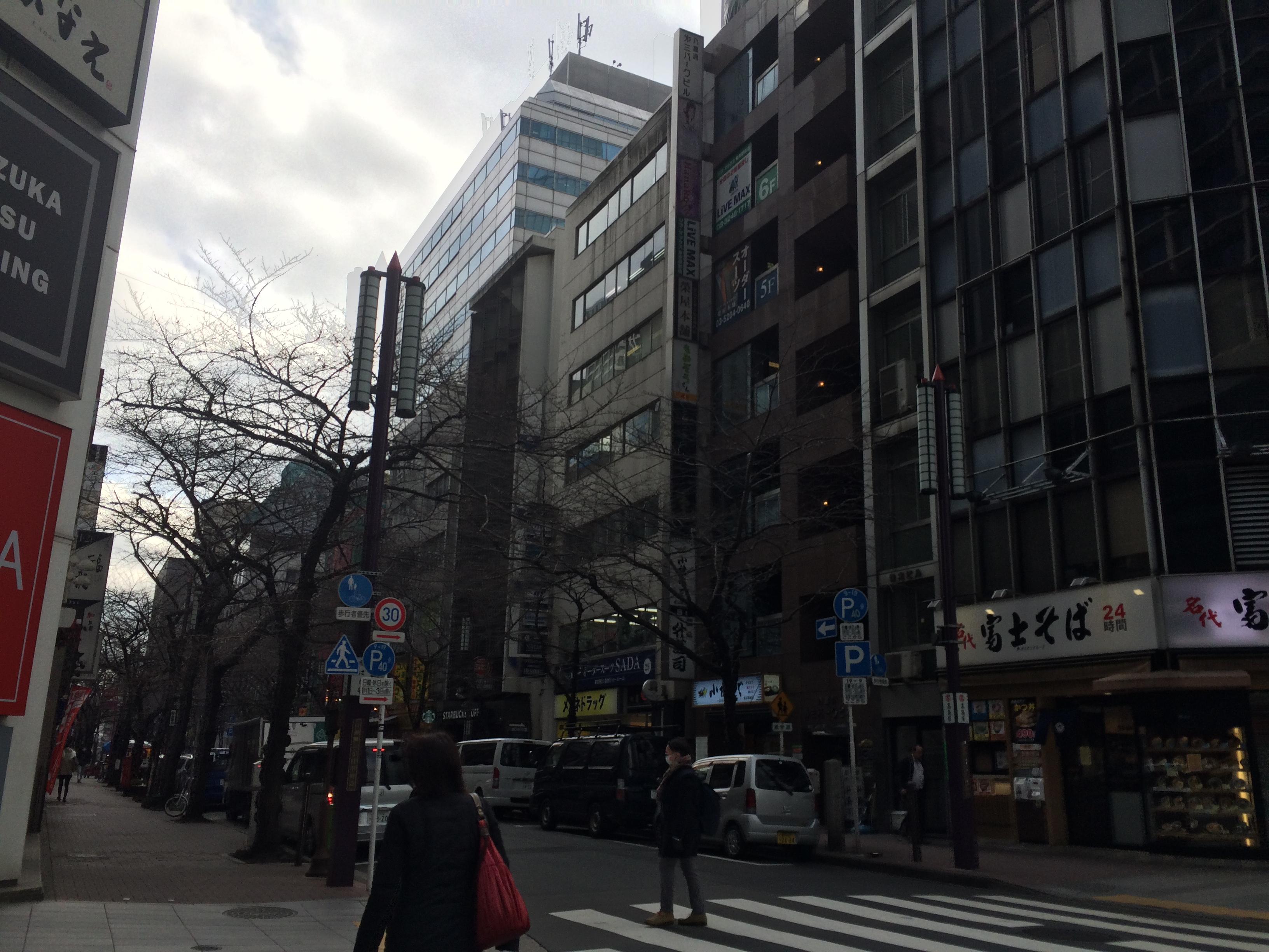 IMG_3794_jalan di downtown tokyo