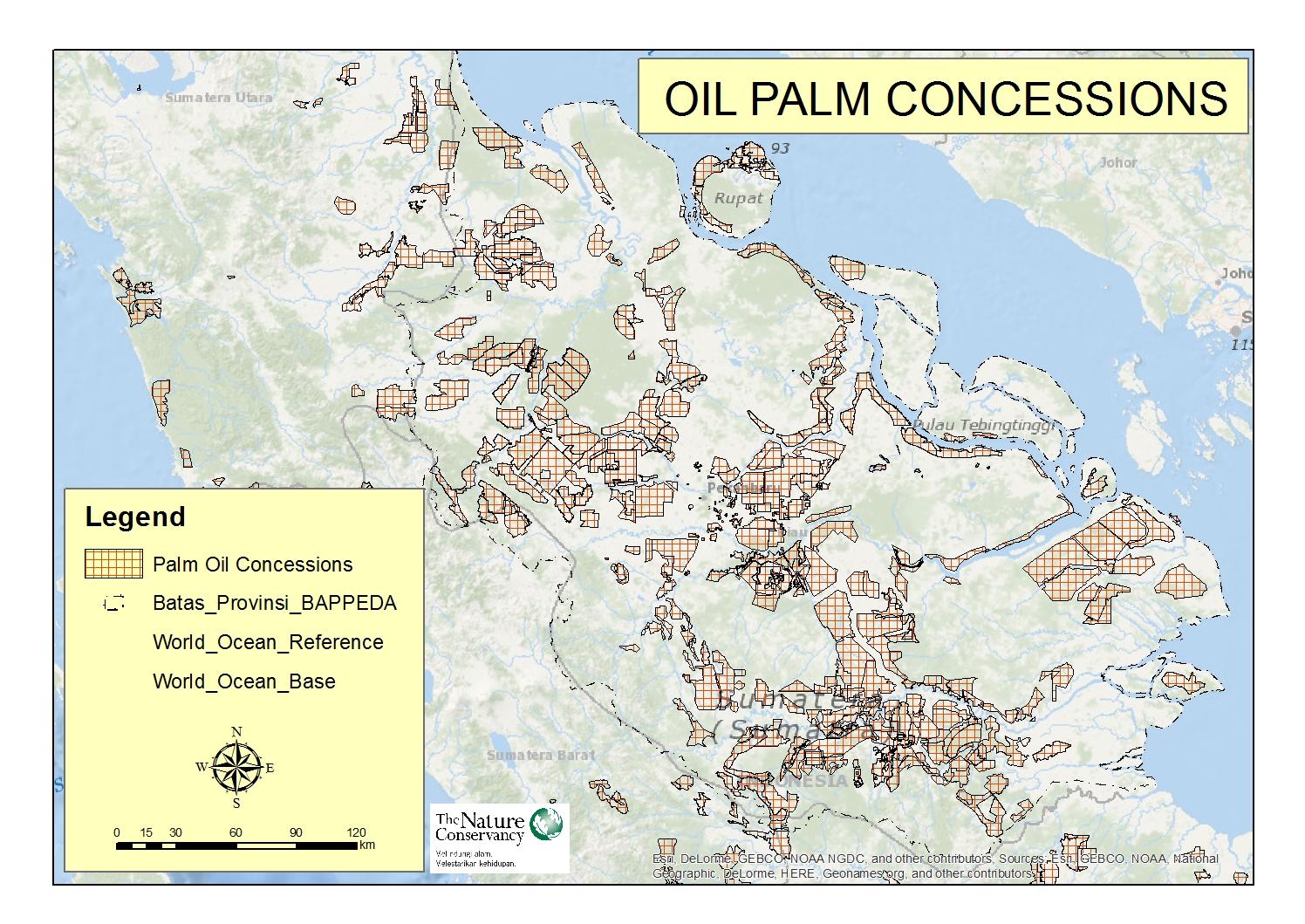 1_riau_oil-palm