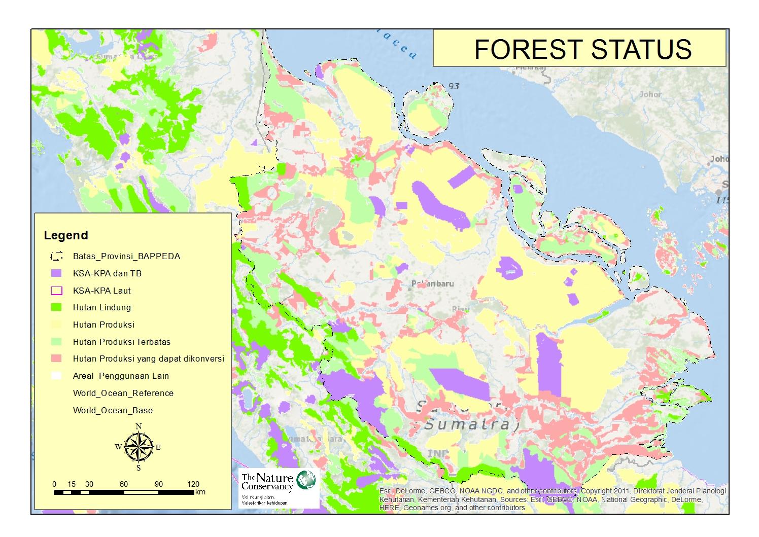 riau_forest-status
