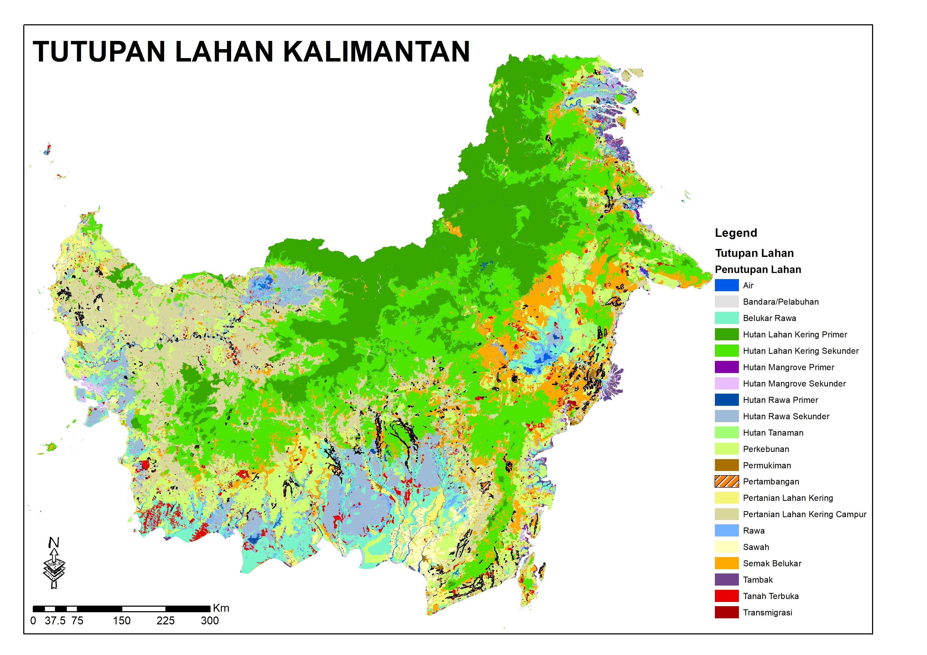 Tutupan lahan Kalimantan